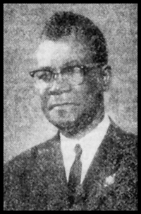 Makavi in middle age